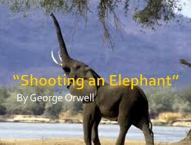 what is the thesis of the story shooting an elephant
