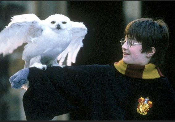 Daniel Radcliffe (Harry Potter films began 2001)Photo- The Telegraph.