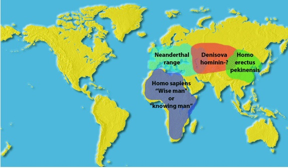 Early humans 'picked up genes' which protected them.