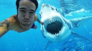 The Most Dangerous Selfies Ever Taken-Photo- article.wn.com