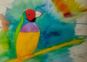 Beautiful Australian Gouldian Finch, Watercolor Pencil , LJ Perspectives
