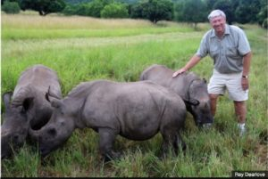 Ray Dearlove (pictured) plans to establish a population of rhinos on a reserve somewhere in Australia.